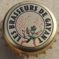 logo brasserie brasseur de gayant.jpg