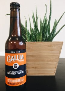 biere GALLIA CITROFORTUNELLA