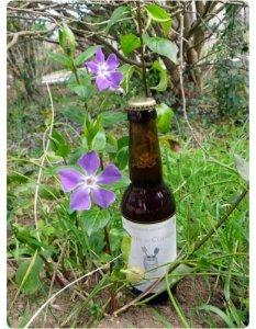 biere Le Côtes du Coiron